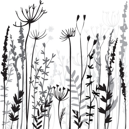 Silhouettes of flowers and grass, hand drawn vector illustration 矢量图像