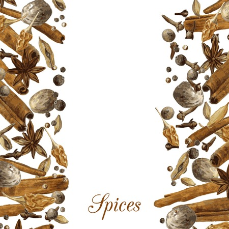 anise: template with spices drawing by watercolor, hand drawn vector illustration