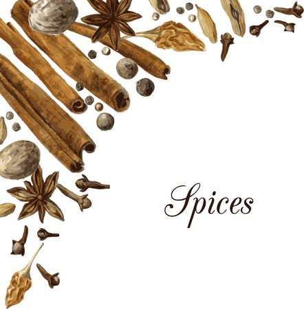 nutmeg: spices drawing by watercolor, hand drawn vector illustration