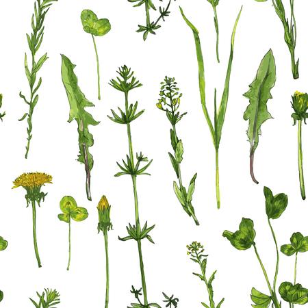 水彩図面ハーブと野生の花とシームレスなパターン ベクトル  イラスト・ベクター素材