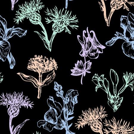 vintage vector seamless floral pattern, hand drawn vector illustration Vector