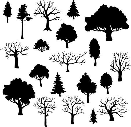 tronco: conjunto de árboles diferentes, ilustración vectorial Vectores