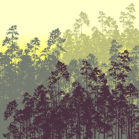 landscape with pine trees, hand drawn vector illustration