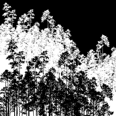 larch: landscape with pine trees, hand drawn vector illustration