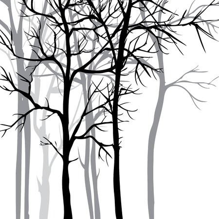 Vector background with trees, hand drawn vector illustration