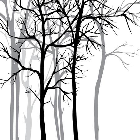 Vector de fondo con árboles, dibujado a mano ilustración vectorial