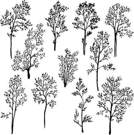 branch silhouette: set of different spring trees, vector illustration Illustration