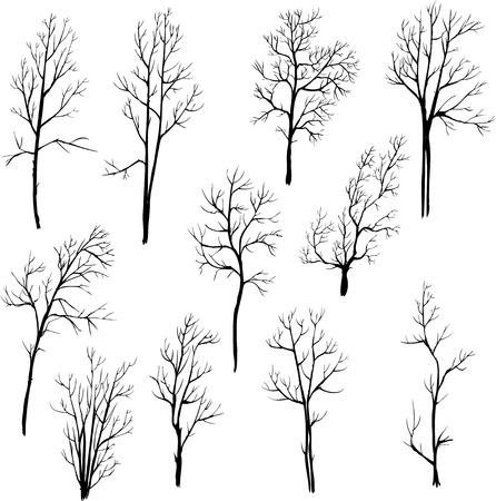 set of different winter trees, vector illustration