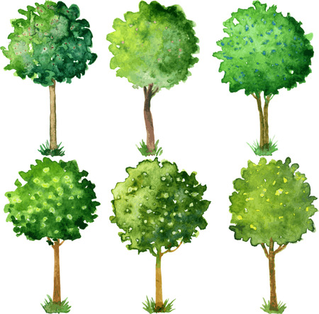 Six flowering trees trimmed in the shape of a ball, set of painted watercolor trees with green leaves and flowers, hand drawn vector illustration