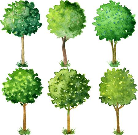 Zes bloeiende bomen gesnoeid in de vorm van een bal, set van aquarel bomen met groene bladeren en bloemen, met de hand getekende vector illustratie Stock Illustratie