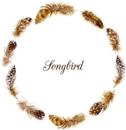 oiseau dessin: cadre rond de plumes tachet� de brun, les plumes de dessin � l'aquarelle sur fond blanc, mod�le vecteur dessin� � la main