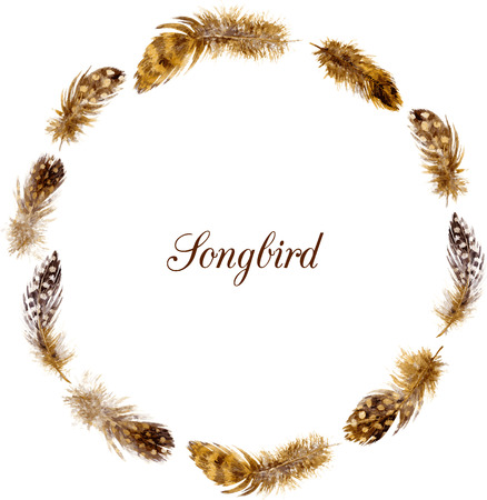 mottled: round frame with mottled brown plumes, watercolor drawing feathers at white background, hand drawn vector template