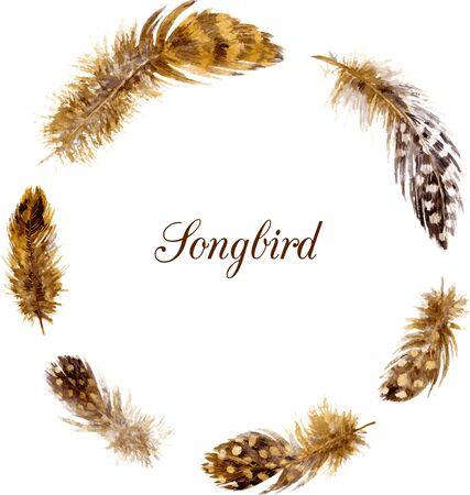 emplume: Marco redondo con plumas marrones moteados, plumas de dibujo de la acuarela en el fondo blanco, dibujado a mano vector plantilla