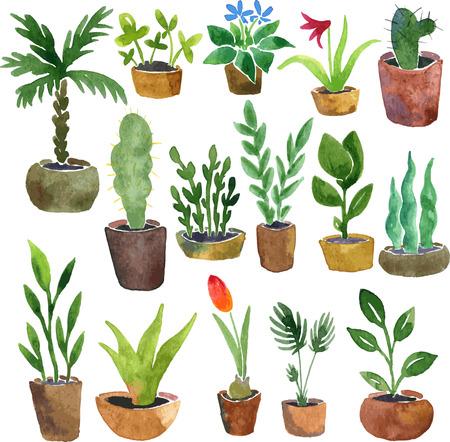 waterverftekening huis planten, met de hand getekende vector illustratie Stock Illustratie