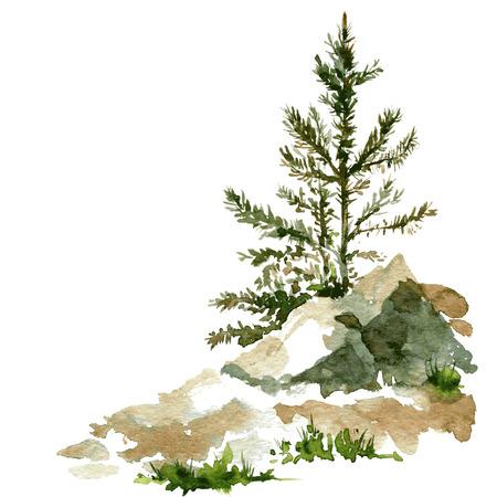 jonge dennenbomen en rotsen tekenen door aquarel, aquarel schets van de wilde natuur, het schilderen van het bos, met de hand getekende vector illustratie