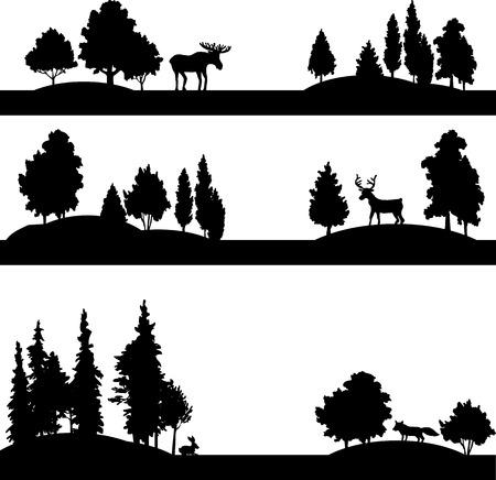 coniferous forest: conjunto de diferentes paisajes con �rboles de hoja caduca, con�feras y animales salvajes, bosque siluetas con los alces, ciervos, zorros y conejos, dibujado a mano ilustraci�n vectorial