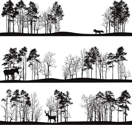 animales del bosque: conjunto de diferentes paisajes con árboles de pino y los animales salvajes, las siluetas de los bosques con ciervos, alces, zorro, dibujado a mano ilustración vectorial