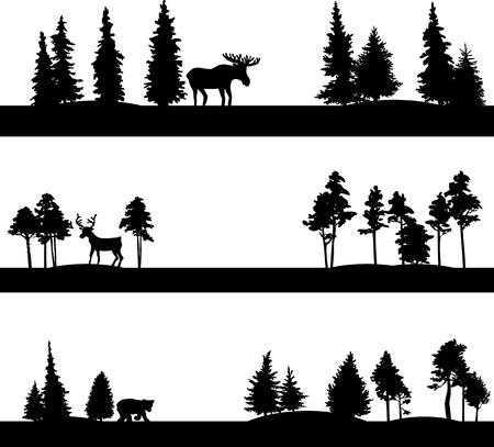 coniferous forest: conjunto de diferentes paisajes con árboles de coníferas y los animales salvajes, las siluetas de los bosques con los alces, ciervos y osos, dibujado a mano ilustración vectorial