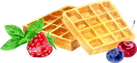 delicious crispy Viennese wafers with berries and mint, painting by watercolor at white background,hand drawn vector illustration Vectores