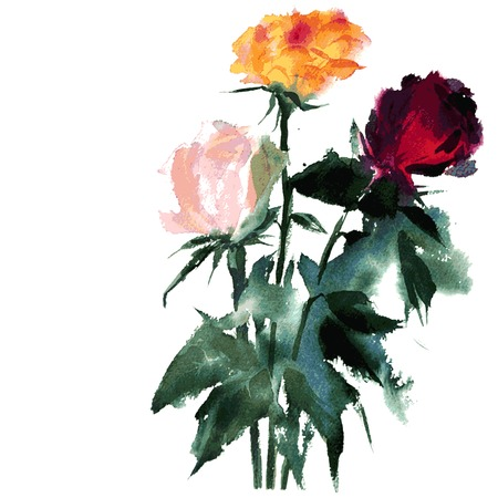 stalks: vector watercolor bouquet of roses with stalks and leaves, hand drawn vector illustration