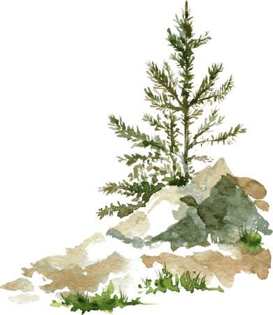 young pine trees and rocks drawing by watercolor, aquarelle sketch of wild nature, painting forest, hand drawn vector illustration Иллюстрация