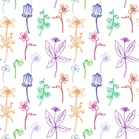 line drawing: Seamless pattern with line drawing herbs, hand drawn vector illustration