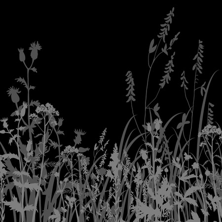 flower sketch: Silhouettes  of flowers and grass at night, vector illustration