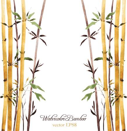 작은 숲: watercolor bamboo grove, hand drawn vector illustration