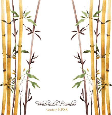 bamboo leaf: watercolor bamboo grove, hand drawn vector illustration