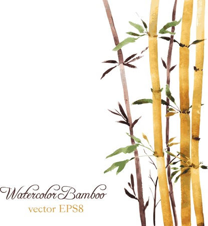 aquarel bamboebos, met de hand getekende vector illustratie Stock Illustratie