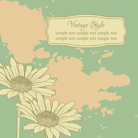 chamomiles: Vintage floral card with chamomiles, vector illustration