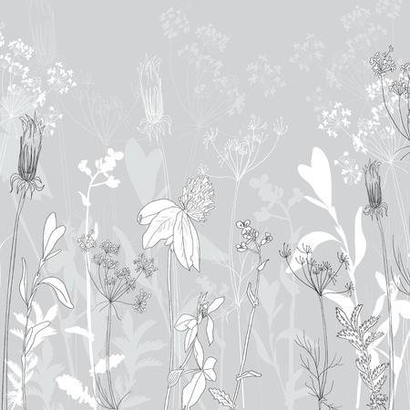 flower thorns: monochromeline drawing herbs , vector illustration