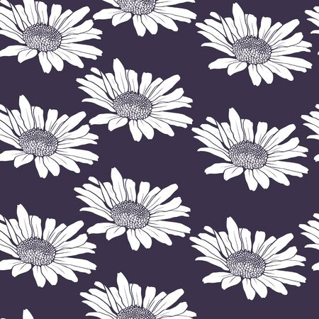 chamomiles: Herbal seamless pattern with chamomiles, vector illustration Illustration