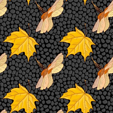 shingle: vector seamless pattern  with maple seeds and leaves at black stones, asphalt road, vector illustration Illustration