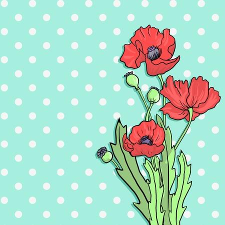 poppy flowers: bouquet of poppy flowers , hand drawn vector illustration
