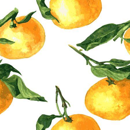 mandarins: vector seamless pattern with watercolor drawing mandarines,hand drawn vector illustration Illustration