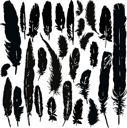 cuervo: conjunto de siluetas de los penachos, plumas dibujadas a mano, ilustraci�n vectorial