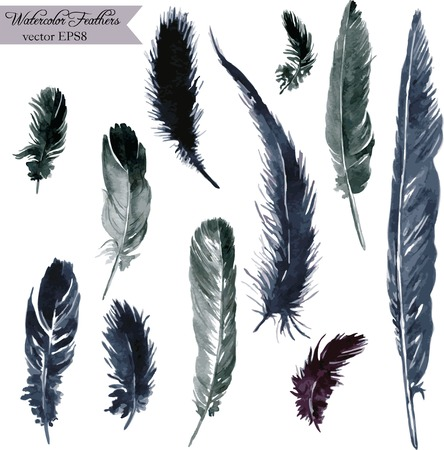 set of plumes, watercolor drawing feathers, hand drawn vector illustration Çizim