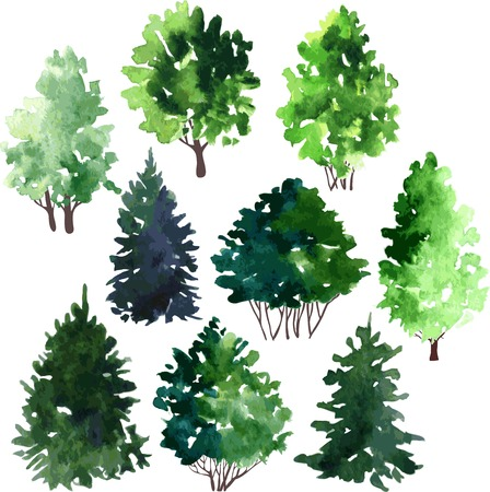 set of trees drawing by watercolor, hand drawn vector illustration Stock Illustratie