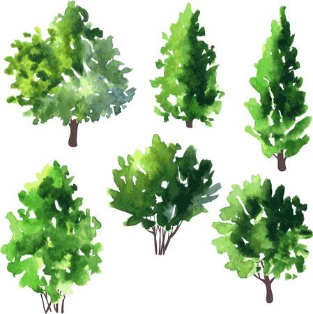 conjunto de diferentes árboles de hoja caduca, ilustración vectorial Ilustración de vector