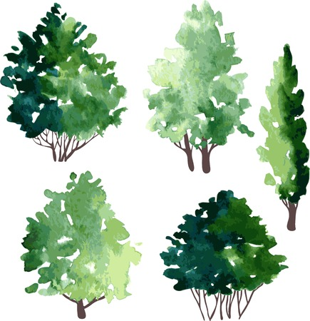 deciduous: set of different deciduous trees, vector illustration