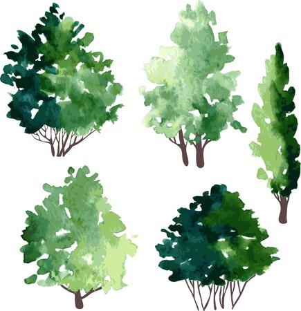 set van verschillende loofbomen, vector illustratie