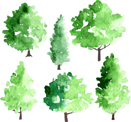 larch: set of different deciduous trees, vector illustration
