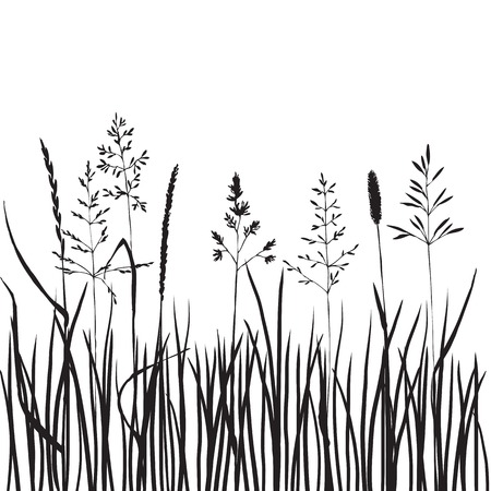 black grass silhouettes, hand drawn wild cereals, meadow wild plants, vector illustration Vettoriali