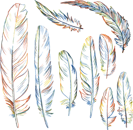 set of multicolor plumes, isolated pencil drawing feathers, creative decoration design elements, hand drawn vector illustration