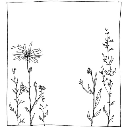 bluet: floral composition with ink drawing herbs and flowers in the square, doodle wild plants, monochrome black line drawing floral card, hand drawn vector illustration Illustration