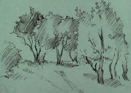 graphite: grove of deciduous trees, painted graphite pencil at the green background, hand drawn sketch of landscape, vector illustration Illustration