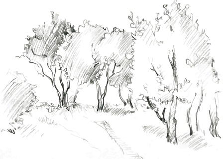 hand with pencil: grove of deciduous trees, painted graphite pencil at the white background, hand drawn sketch of landscape, vector illustration