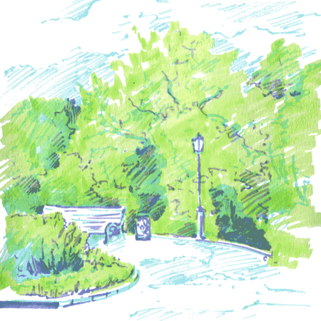 flower beds: walkway of park with flower beds, a lantern and bench, spring foliage, hand drawn sketch of urban landscape, vector illustration