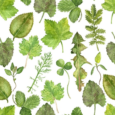 Seamless pattern with watercolor drawing leaves, painted  wild plants, botanical illustration in vintage style, color drawing floral pattern, hand drawn illustration 스톡 콘텐츠
